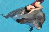 Животные как средство терапии